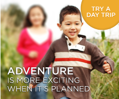 Day Trips available for Todd County, KY